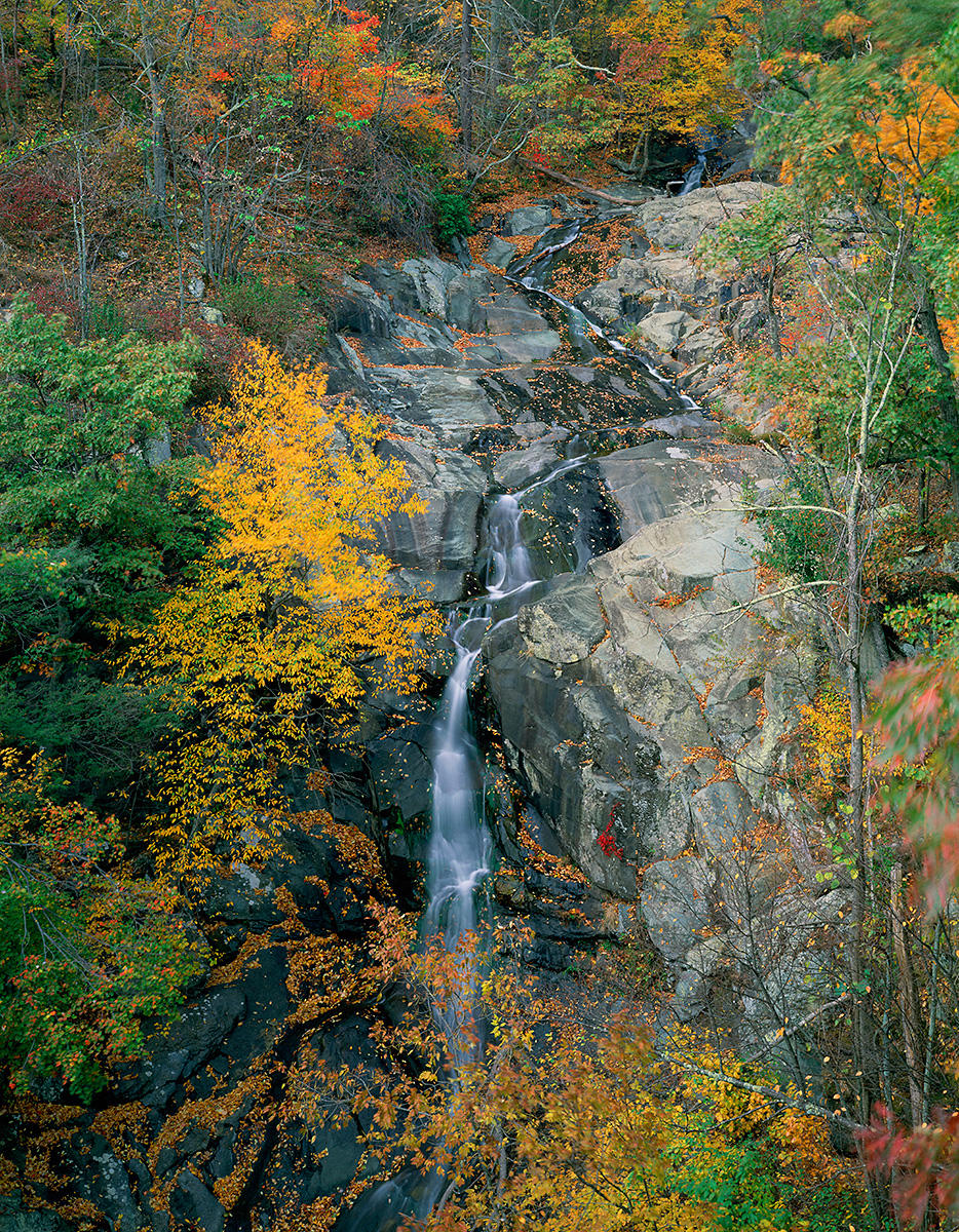 Whiteoak Canyon Falls No. 1 - Stream